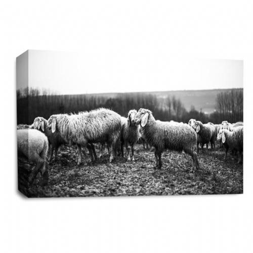 Mud Monsters - Goats Canvas Wall Art Picture Print